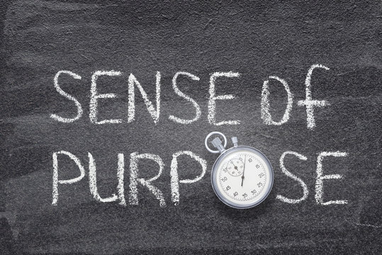 sense of purpose watch