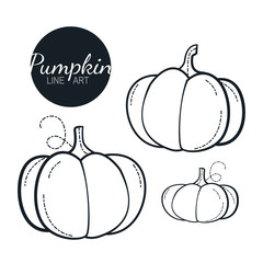 pumpkin linear graphic design. Black and white image of vegetables. Vector illustration line art