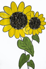 Hand-made picture of lovely sunflower. Painted with yellow and green gouache and glued black seeds. Art on the white background (1)