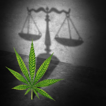 Legal Marijuana Concept