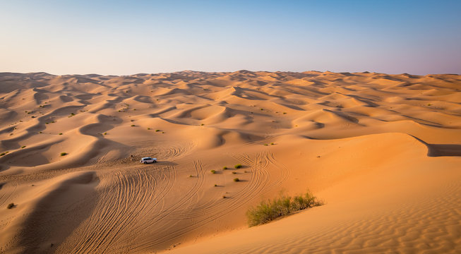 Abu Dhabi safari desert