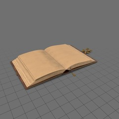 Open antique book