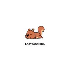 Lazy squirrel sleeping icon, logo design, vector illustration