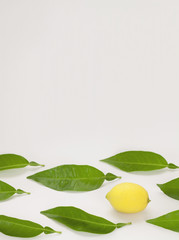 lemon over white background