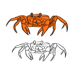 orange crab vector illustration sketch doodle hand drawn with black lines isolated on white background