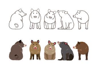 cute boars border set