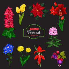 Flower bouquet cartoon icon for floral design