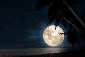 Wall Mural - Beautiful fantasy of tropical beach with star in night sky, full moon - dreamlike wonder nature.