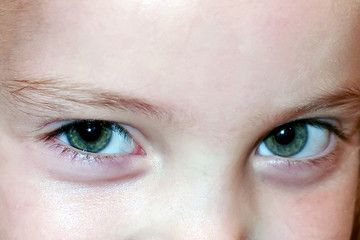 beautiful big green eyes of the young girl. Close-up