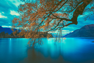 Sunset at Lake Wakatipu, Queenstown New Zealand landscape