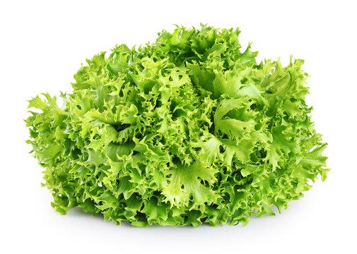 Fresh endive lettuce isolated on white background.