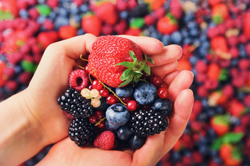 Woman hands holding organic fresh berries against the background of strawberry, blueberry, blackberries, currant, mint leaves. Top view. Summer food. Vegan, vegetarian and clean eating concept.