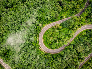 Winding road in the forest aerial view from a drone