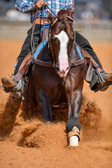 The front view of a rider in jeans, cowboy chaps and checkered shirt on a reining horse slides to a stop in the red clay an arena.