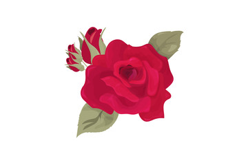 Vector illustration: Rose Flower bud isolated. Maroon Rose with lealets made in a vintage style.