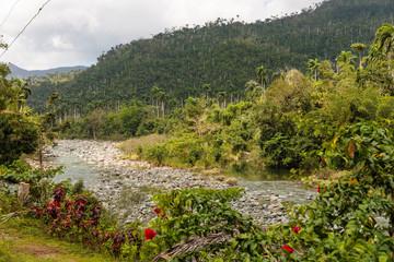 view on national park alejandro de humboldt with river Cuba