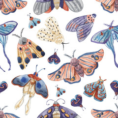 Seamless pattern with watercolor moths on white isolated background