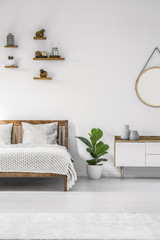Plant in minimal bedroom interior