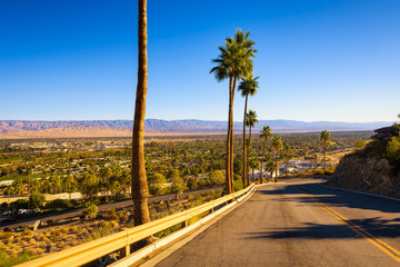 Fototapete - Scenic road leading to Palm Springs in California