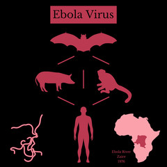 Ebola Virus. Infographics Source of disease. Black and red