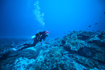 Poster Coral reefs scuba driving