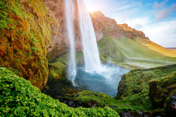 Perfect view of famous powerful Seljalandsfoss waterfall in sunlight. Location place Iceland, sightseeing Europe.