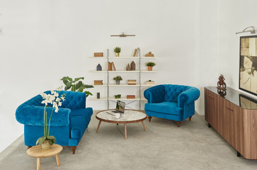 blue sofa white wall and bookcase living room with laptop