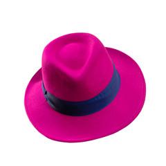 Pink and blue fedora style felt hat isolated on white.