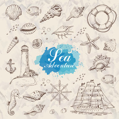 Isolated sea objects. Shells, starfish, anchor, lighthouse, fish, ship
