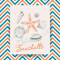 Marine Holidays cards with seashells