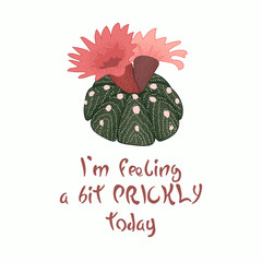 Hand written lettering Message slogan I'm feeling a bit prickly today with blooming cactus image. Pinlk red flower.
