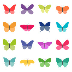Set of color butterflies on white background, vector illustration