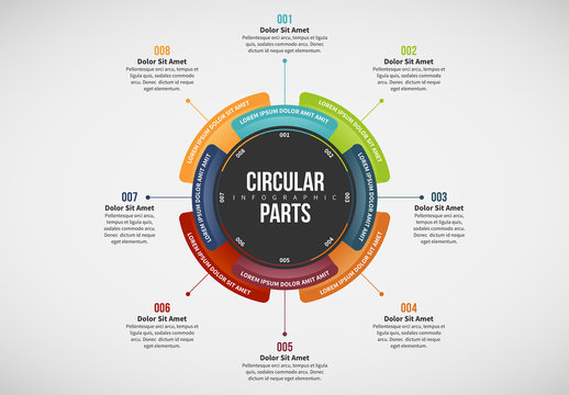 Numbered Circular Infographic Layout