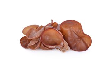 fresh Jew's Ear Mushroom on white background