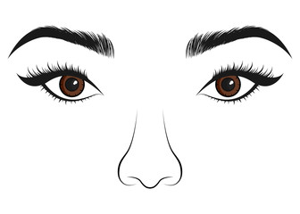 Beautiful women portrait. Long lashes, eyes and nose. Vector illustration.