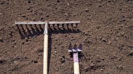 Garden tools. Rake.