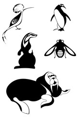 Animal icons isolated illustration. Decor animal silhouettes collection for design isolated on white
