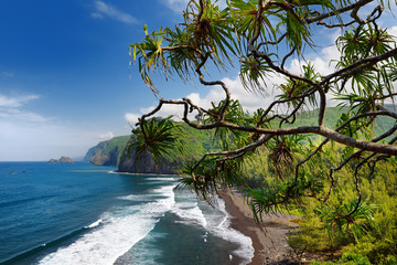 Stunning view of rocky beach of Pololu Valley, Big Island, Hawaii, taken from Pololu trail, Hawaii