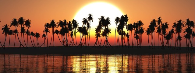 beach at sunset, silhouettes of palm trees on a tropical beach, palm trees under the setting sun, 3D rendering