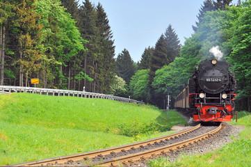 Einfahrt Brockenbahn in Drei Annen Hohne