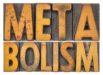 metabolism word abstract in wood type
