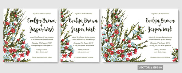 Vector wedding invitations set with red and blue wax flowers (chamaelaucium) on white background. Romantic tender floral design for wedding invitation, save the date and thank you cards