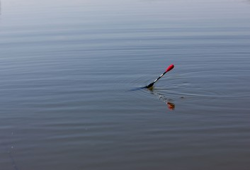 fishing float on water