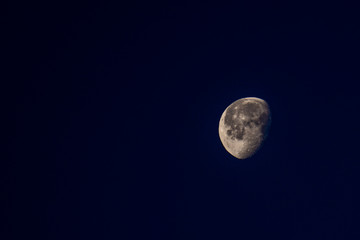 Real waning gibbous moon at northern hemisphere in the early morning.  Rough surface of the moon