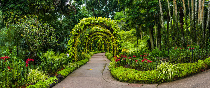 panorama, orchid arch in Singapore botanical gardens