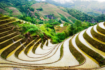 Stunnig scenery of Chinese rice terrace near Guilin
