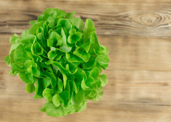 Fresh salad leaves  on a wooden background.