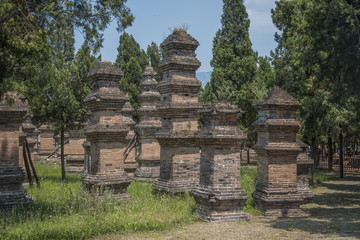 Forest pagodas of the Shaolin Monastery.