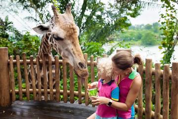 Kids feed giraffe at zoo. Family at safari park.