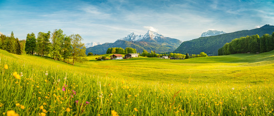Foto op Aluminium Oranje Idyllic summer landscape in the Alps with blooming meadows at sunset
